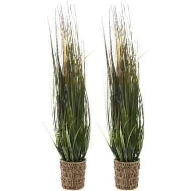 2x groene grasplanten kunstplanten 100 cm in picknick mand