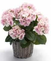 Kunstplant hortensia roze in picknick mand 45 cm